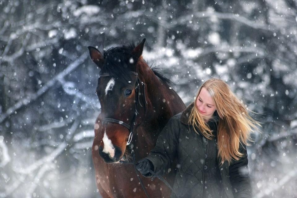 site de rencontres cheval rencontre femme asiatique vivant au quebec