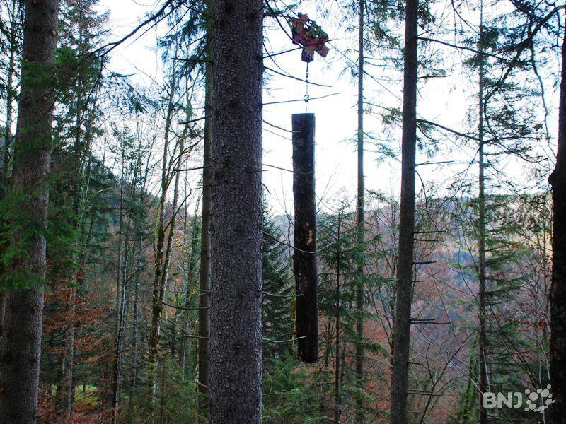 Gros travaux forestiers biaufond rfj votre radio r gionale for Eaux et forets